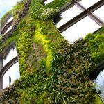 Une façade végétalisée pour votre jardin