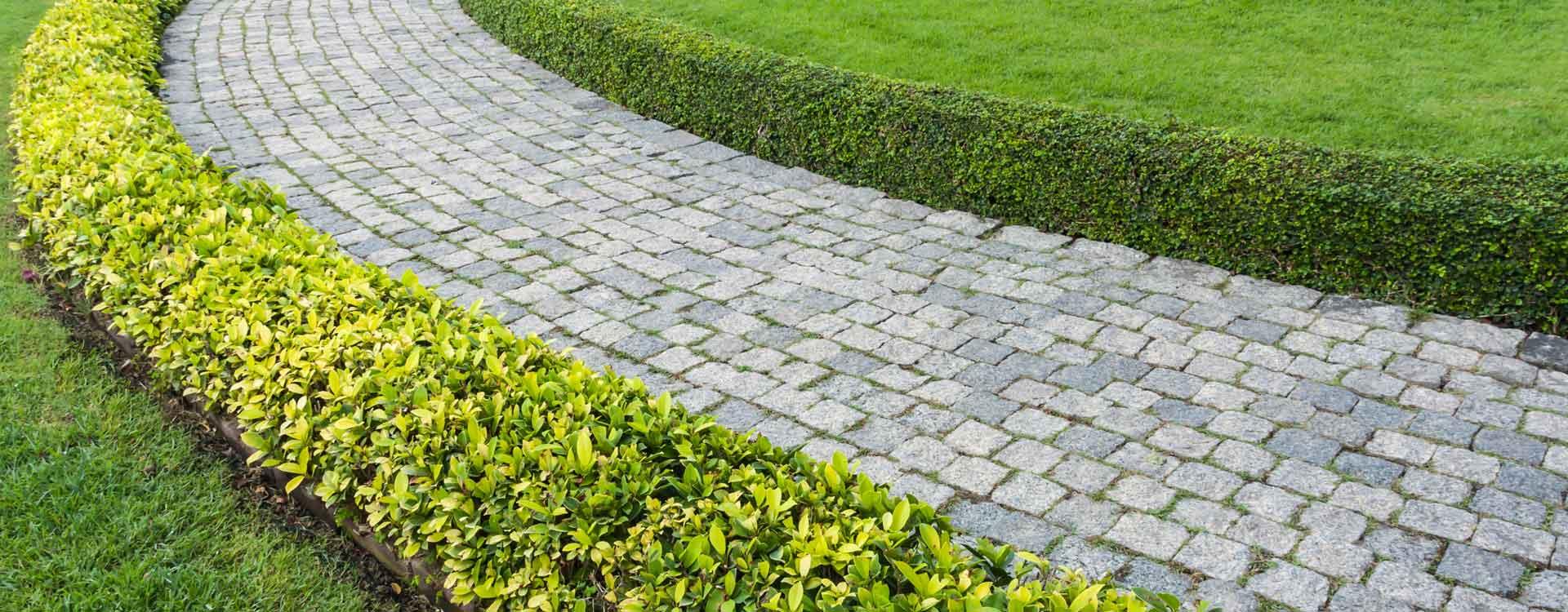 Contrat d'entretien parc et jardin