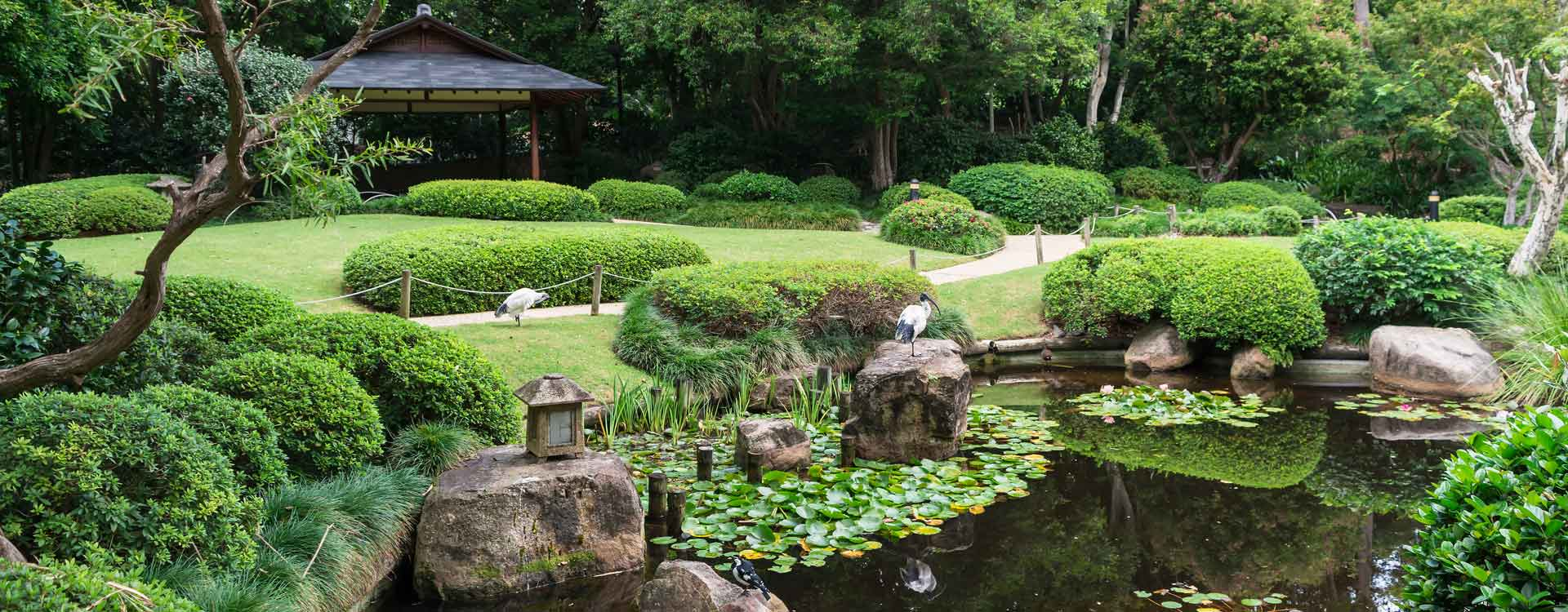 Création de jardin japonais