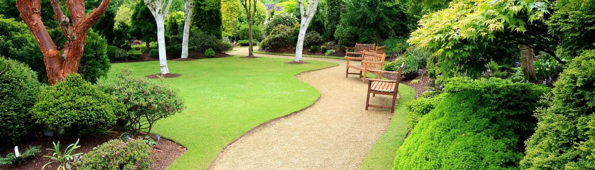 Conseil en entretien de parc et jardin