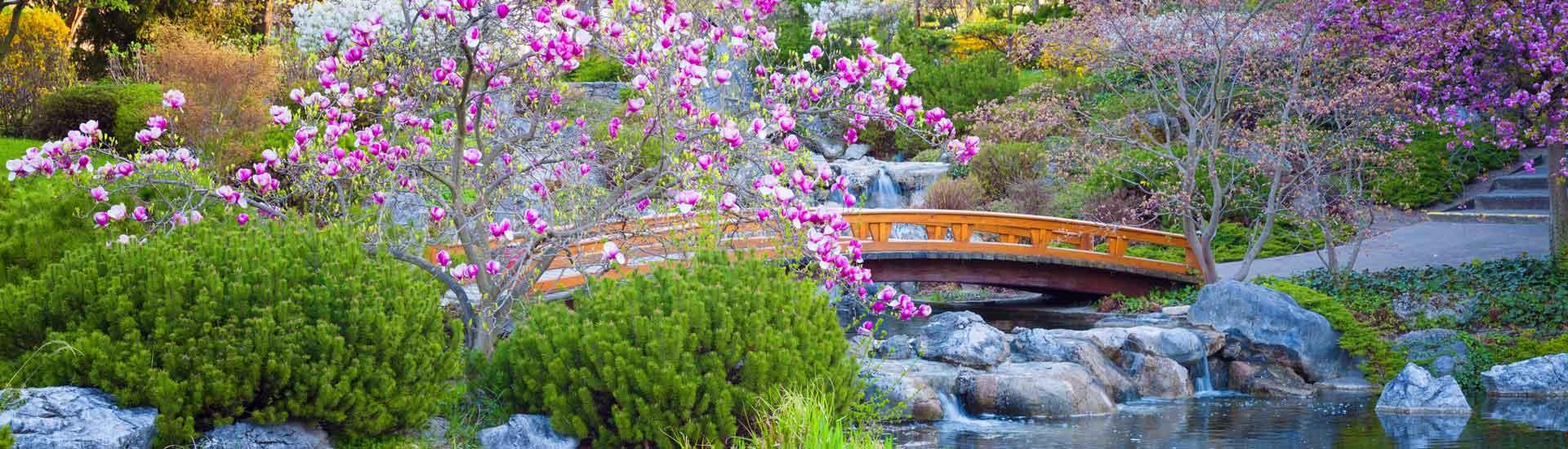Entreprise de création jardin japonais