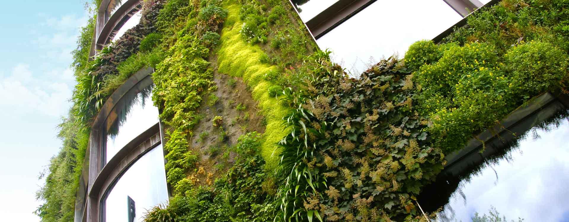 Votre mur végétalisé en Suisse