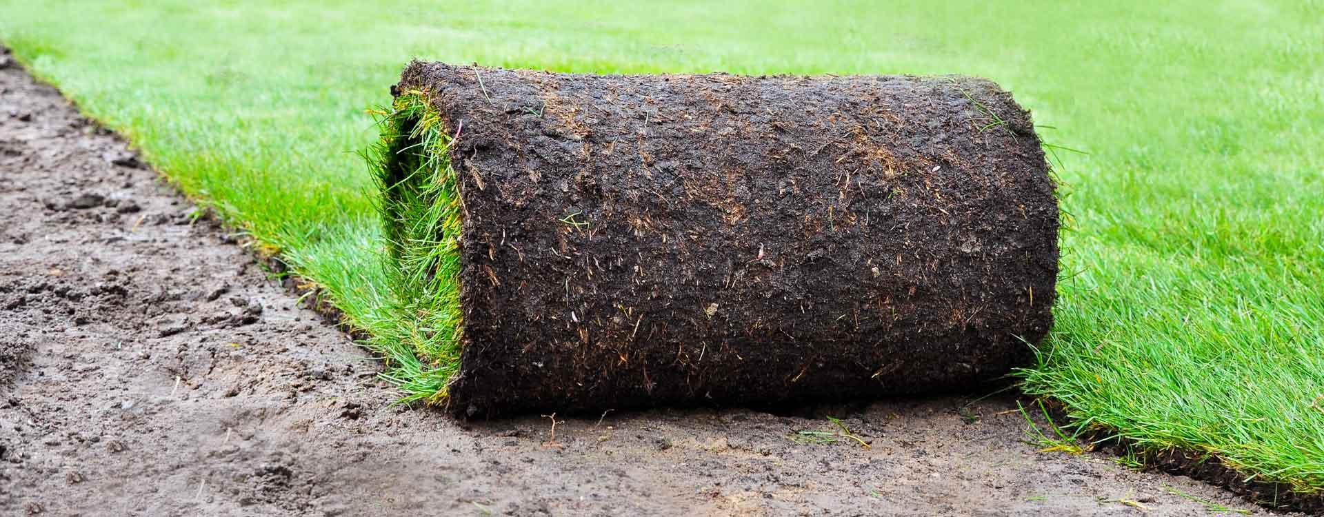 Société de réparation pelouse abimée